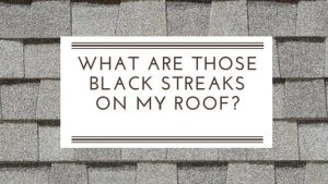 What are Those Black Streaks on My Roof?