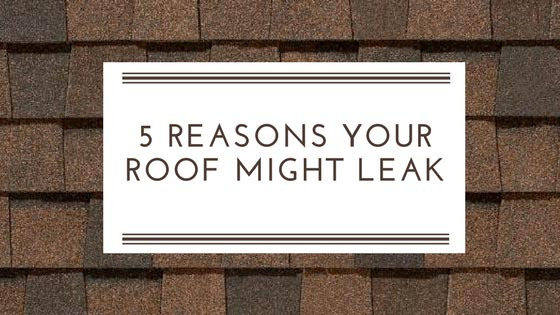 Roof Leak? Here are 5 Possible Reasons Why