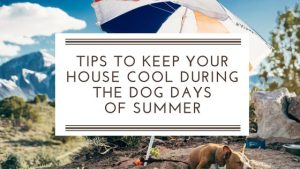 It's the Dog Days of Summer – Here are 4 Ways to Keep Cool without Breaking the Bank