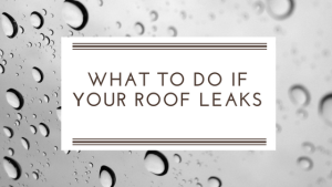 What to Do if Your Roof is Leaking